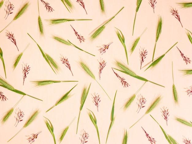 Fondo floreale del modello dei fiori del campo. vista dall'alto, piatto.