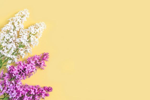 Rami e petali lilla del modello floreale su fondo giallo. portafoto.