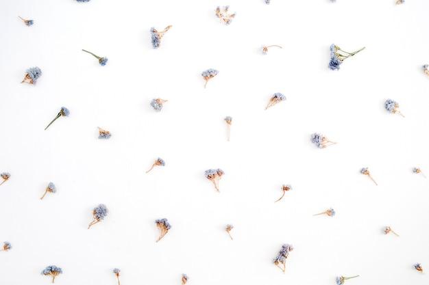 Motivo floreale fatto di fiori secchi blu su sfondo bianco. disposizione piana, vista dall'alto. motivo floreale.