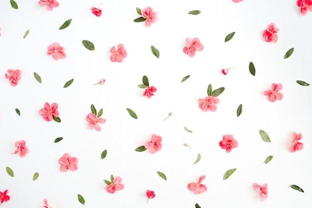 Motivo floreale fatto di fiori di ortensie rosa, foglie verdi, rami su bianco
