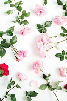 Motivo floreale fatto di rose rosa e rosse, foglie verdi, rami su bianco