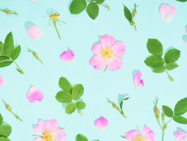 Motivo floreale di rose selvatiche rosa su sfondo blu.