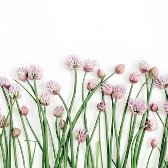 Motivo floreale con fiori selvatici, foglie verdi, rami su sfondo bianco. disposizione piatta, vista dall'alto