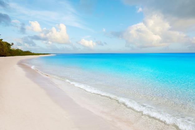 Florida keys beach bahia honda park stati uniti