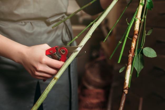 Mani del fiorista che tagliano il gambo del fiore