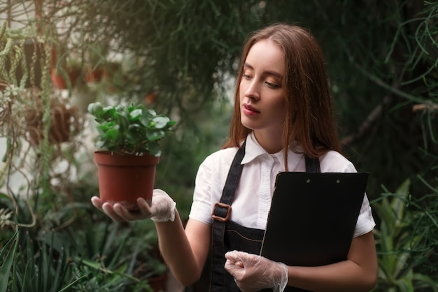 Fiorista prendersi cura dei fiori domestici in serra