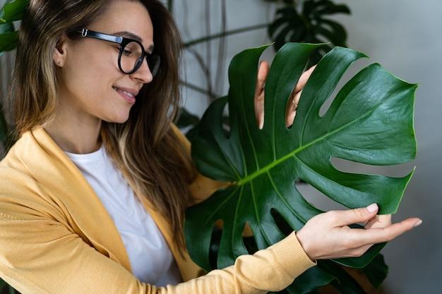 Donna fiorista stare tra le foglie di monstera in casa verde, toccando foglie verdi lussureggianti. amore per le piante