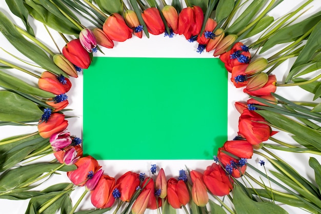 Cornice floreale di tulipani con uno sfondo verde vuoto per l'iscrizione
