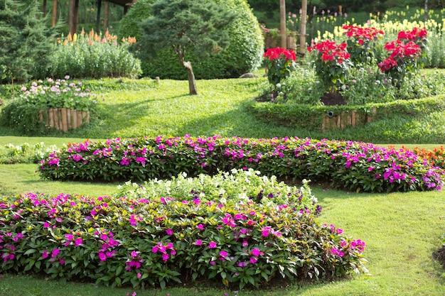 Giardino fiorito con colorati