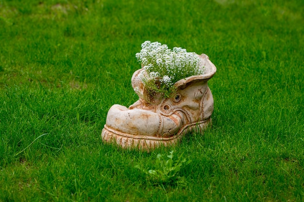 Vaso di fiori a forma di scarpa con fiori che sbocciano con spazio di copia.