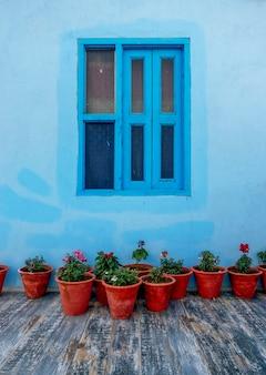 Vasi da fiori con parete blu
