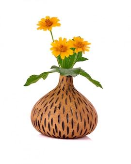 Vaso di fiori su bianco