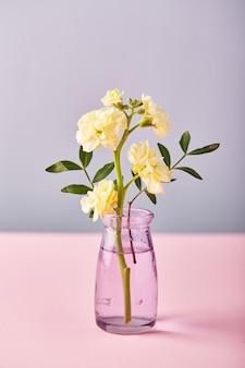 Fiore di matthiola giallo in un piccolo vaso di vetro concetto di design di auguri per le vacanze sul tavolo rosa