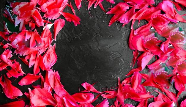 Fiori su sfondo nero. cerchio da petali di peonie. saluto per la giornata internazionale della donna. idea per annuncio o invito.