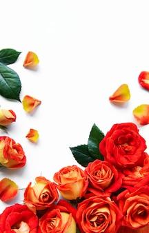 Composizione di fiori cornice fatta di rose rosse e foglie su sfondo bianco