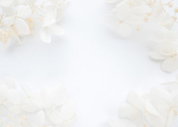 Composizione di fiori da fiori di ortensia blu su sfondo bianco modello primavera estate per il tuo