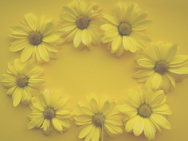 Composizione di fiori da fiori di crisantemo su sfondo giallo. colore dell'anno 2021 illuminante, primavera, estate modello per i tuoi progetti.