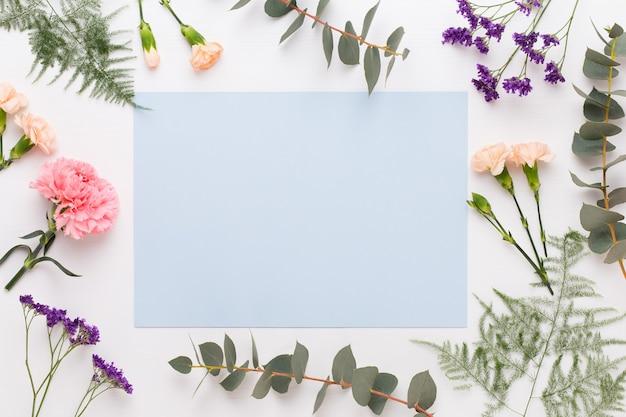 Composizione di fiori. carta bianca, fiori di garofano, rami di eucalipto. vista piana laico e dall'alto.
