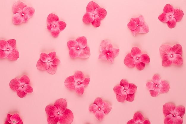 Composizione di fiori. modello fatto di sfondo fiori rosa. appartamento laico, vista dall'alto, copia dello spazio.