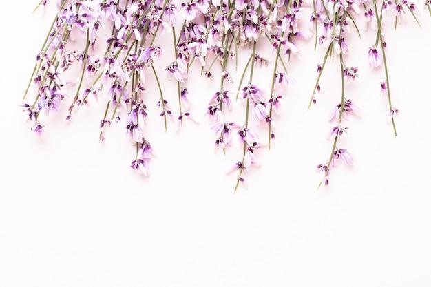 Composizione di fiori. fiori rosa su sfondo rosa. pasqua, concetto di primavera. biglietto d'auguri.