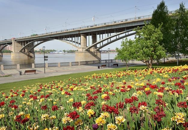 Fiori sull'argine a novosibirsk aiuole colorate che fioriscono in primavera un ponte stradale