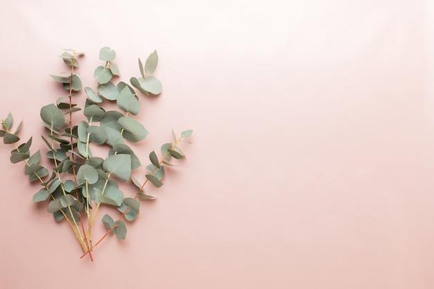 Composizione di fiori ed eucaalipto. modello costituito da vari fiori colorati su sfondo bianco. vita piatta laici.