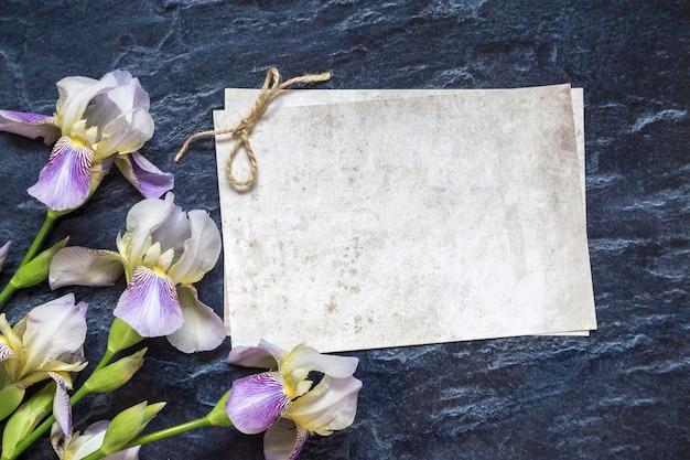 Fiori di iris su uno sfondo di pietra. posto per il testo.