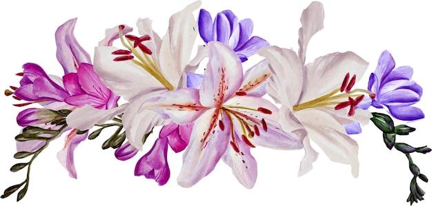 Fiori e foglie, acquerello. illustrazioni ad acquerello