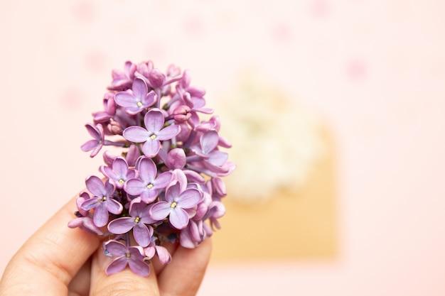 Fiori lilla, busta, disposizione piatta, vista dall'alto