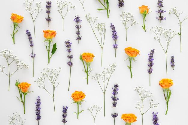 Fondo del modello di fiori