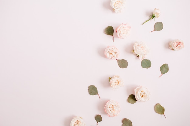 Motivo floreale fatto di rose beige, rami di eucalipto su sfondo rosa pastello pallido. disposizione piatta, vista dall'alto