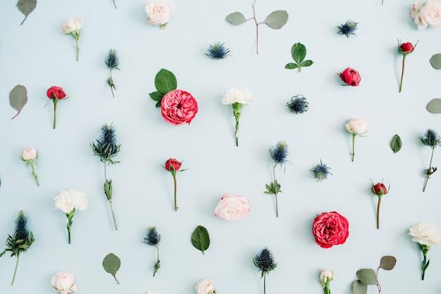 Struttura del reticolo di fiori fatta di rose beige e rosse, foglia di eucalipto su blu pastello pallido