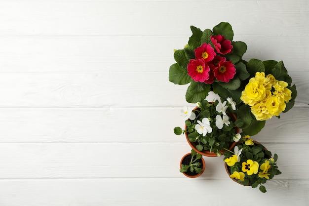 Fiori in vasi su fondo di legno bianco, spazio per testo