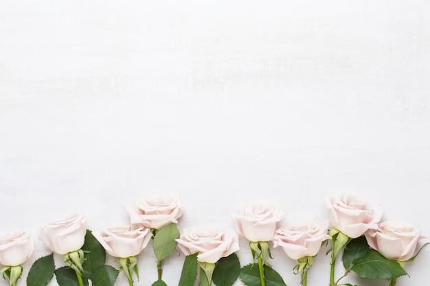 Cartolina d'auguri di san valentino fiori. cornice fatta di rosa rosa su sfondo grigio. appartamento laico, vista dall'alto, copia dello spazio.