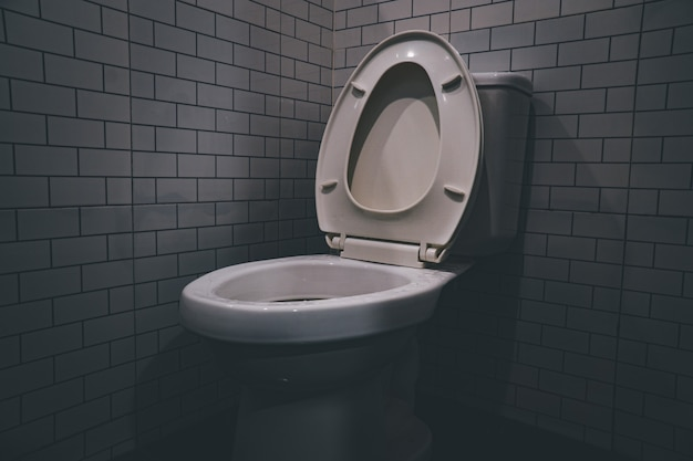 Wc a filo tazza in ceramica bianca vicino alla luce laterale della parete grigia nel bagno moderno