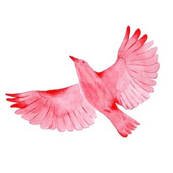 Uccello rosso in volo