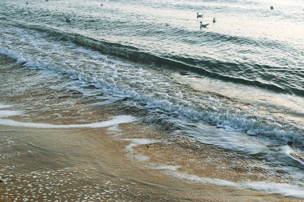 Onde di schiuma sulla spiaggia al mattino, sabbia gialla, mare
