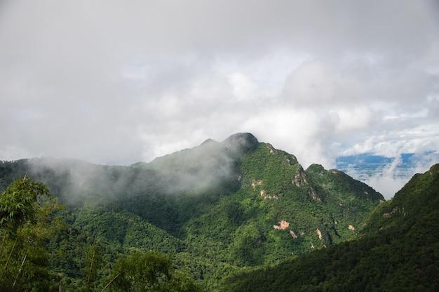 La nebbia copriva le montagne verdi dopo la pioggia.
