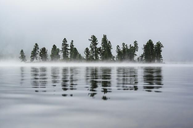 Alberi coperti di nebbia sulla riva di un lago di montagna si riflettono nell'acqua nel distretto di ulagansky della repubblica di altai, russia