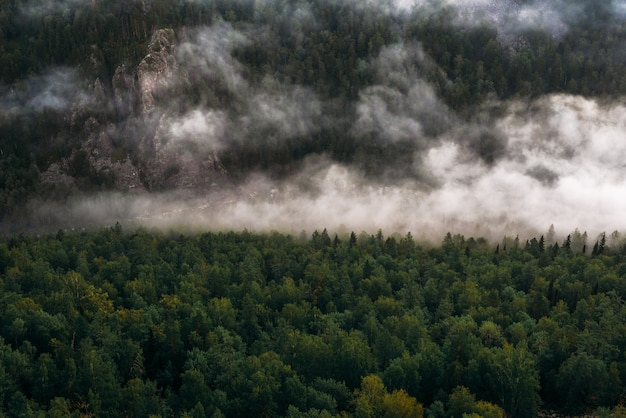 Nebbia in montagna all'alba. nebbia mattutina in montagna all'alba. nuvole in montagna. nebbia mattutina dopo la pioggia. montagne all'alba. fiumi di latte. copia spazio