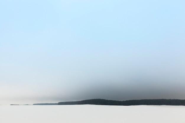 Nebbia nel bosco invernale dopo l'ultima nevicata nebbia e scarsa visibilità