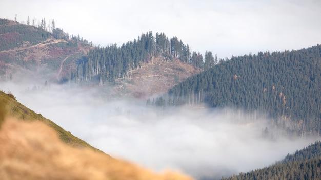 Alba nebbiosa in montagna, vista drone.