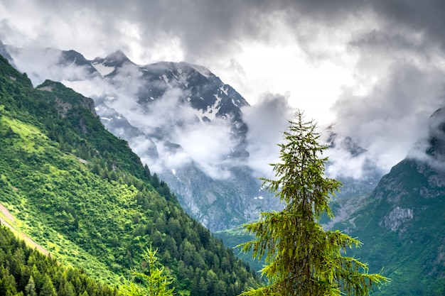 Mattinata nebbiosa nelle alpi italiane, alto adige, italia