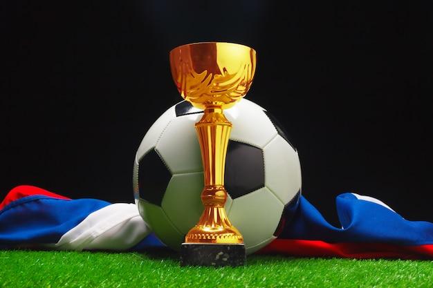 Tazza di calcio con la palla di calcio su erba