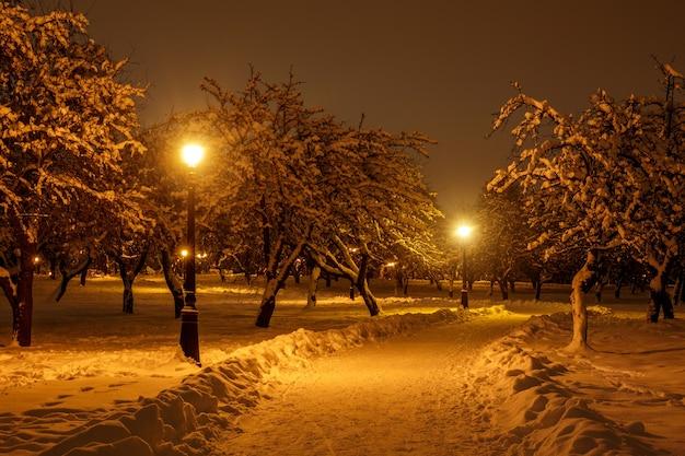 Sentiero per pedoni in un parco cittadino d'inverno. Foto Premium