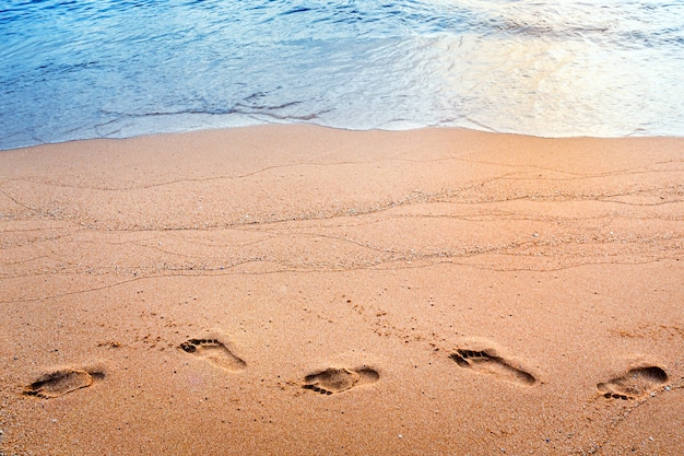 Orme sulla spiaggia di sabbia al mattino