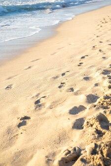 Orme nella sabbia della spiaggia di es trenc palma de mallorca spagna