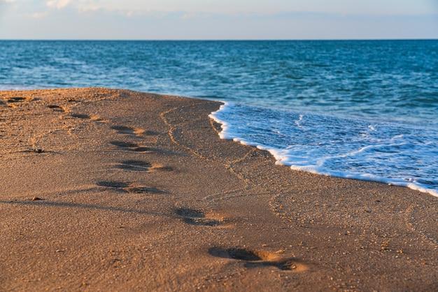 Orme sulla spiaggia di sabbia bagnata