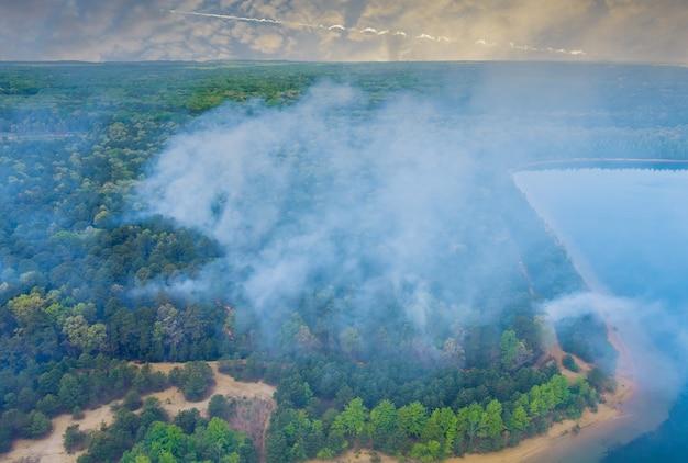La foresta in california con incendi aerei panoramici sta bruciando alberi fumo fuoco erba secca dry