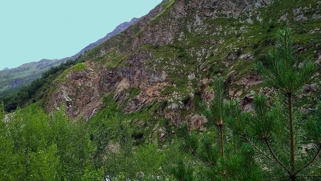 Foresta e montagne caucasiche